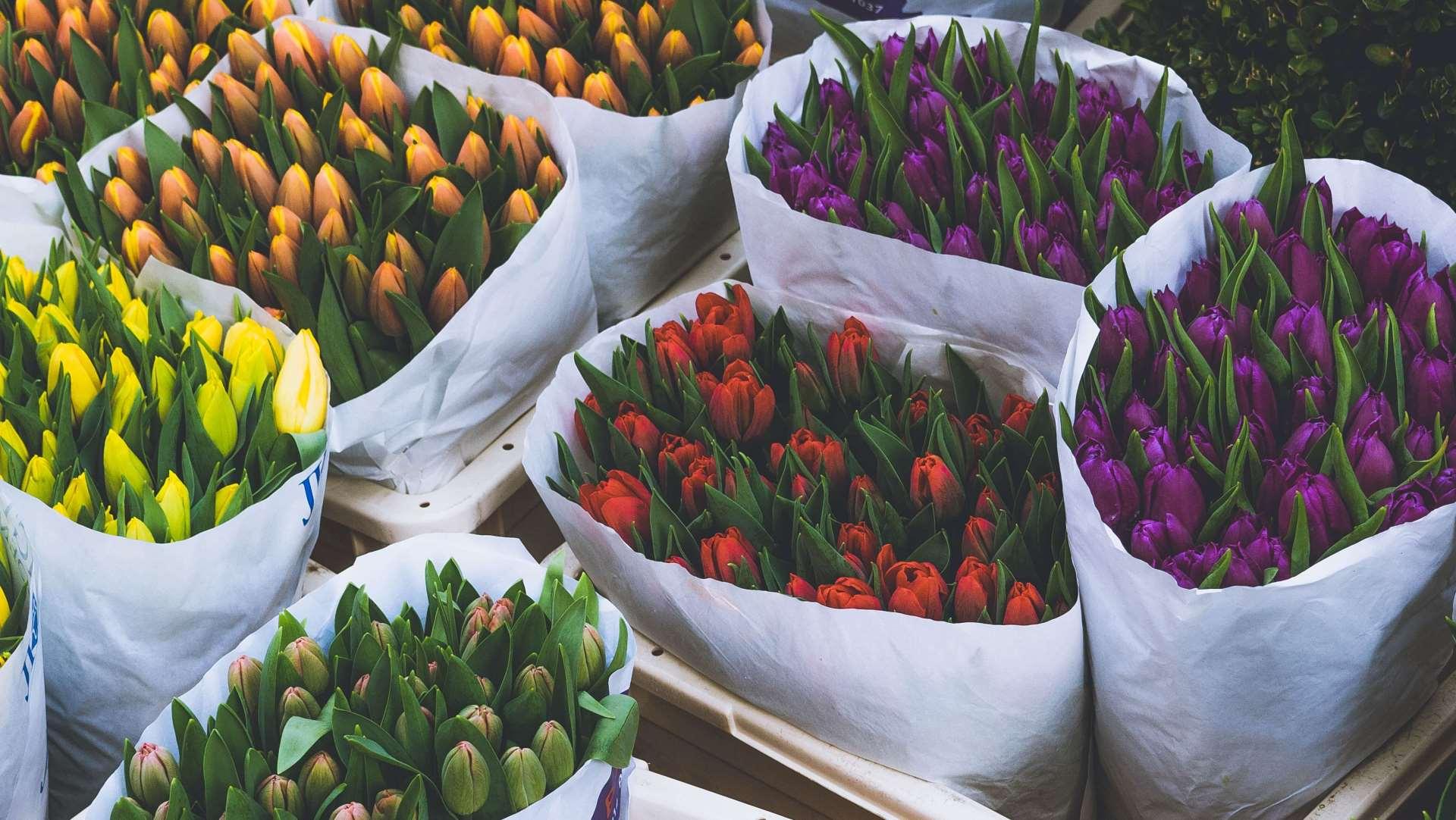 buy-flowers-flower-tower-export